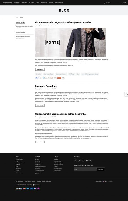 Forte - Premium Responsive Bigcommerce Template (Stencil Ready)